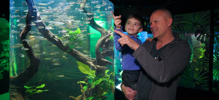Un weekend di edutainment tutto da vivere a Gardaland SEA LIFE Aquarium